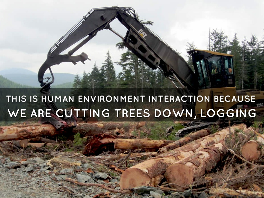 human environment interaction ccot essay Read chapter summary: global environmental change often seems to be the   the study of human interactions with the global environment poses difficult   how and why does the consumption of energy per unit of gnp change over time.