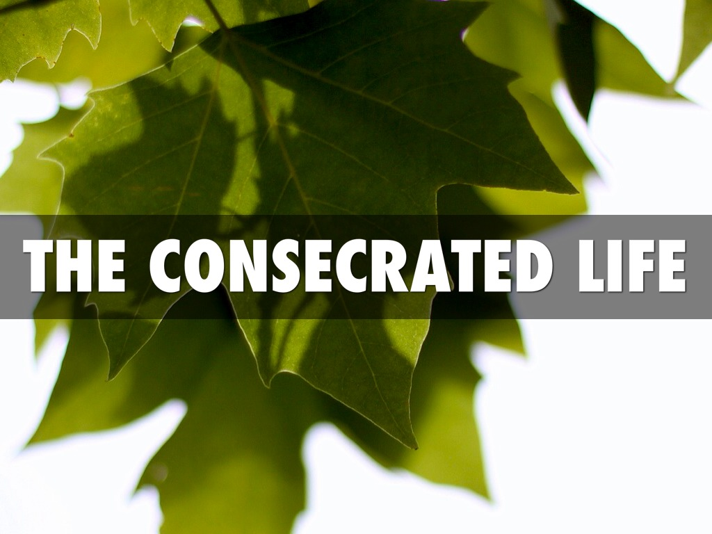 Image result for A CONSECRATED LIFE