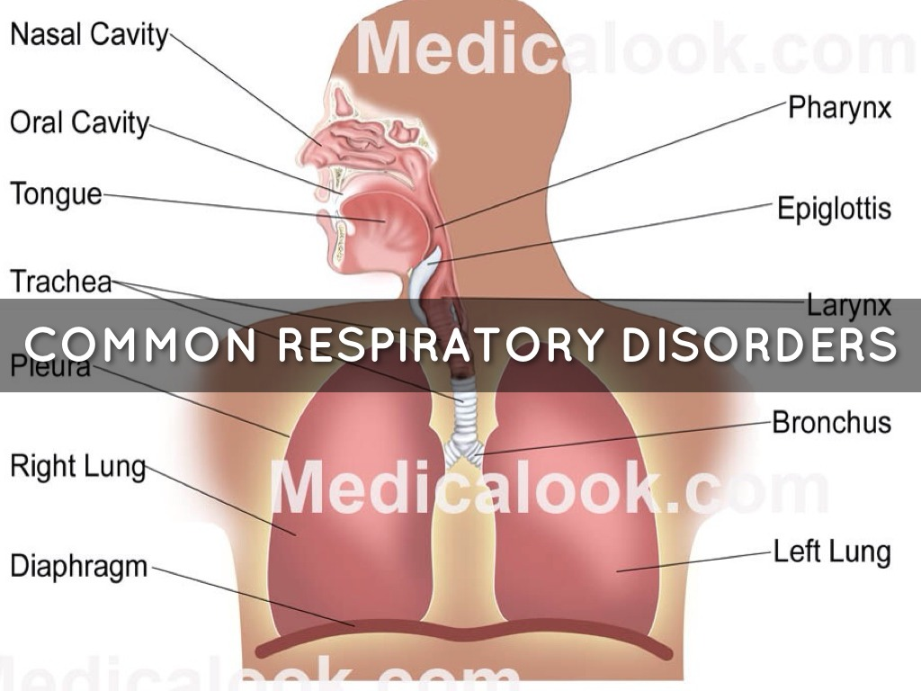 respiratory disorders Respiratory disease is the term for diseases of the respiratory system these include diseases of the lung, pleural cavity, bronchial tubes, trachea, upper respiratory tract and.
