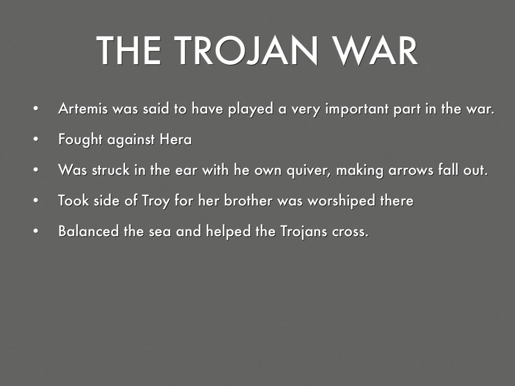 trojan s point of view on the trojan war