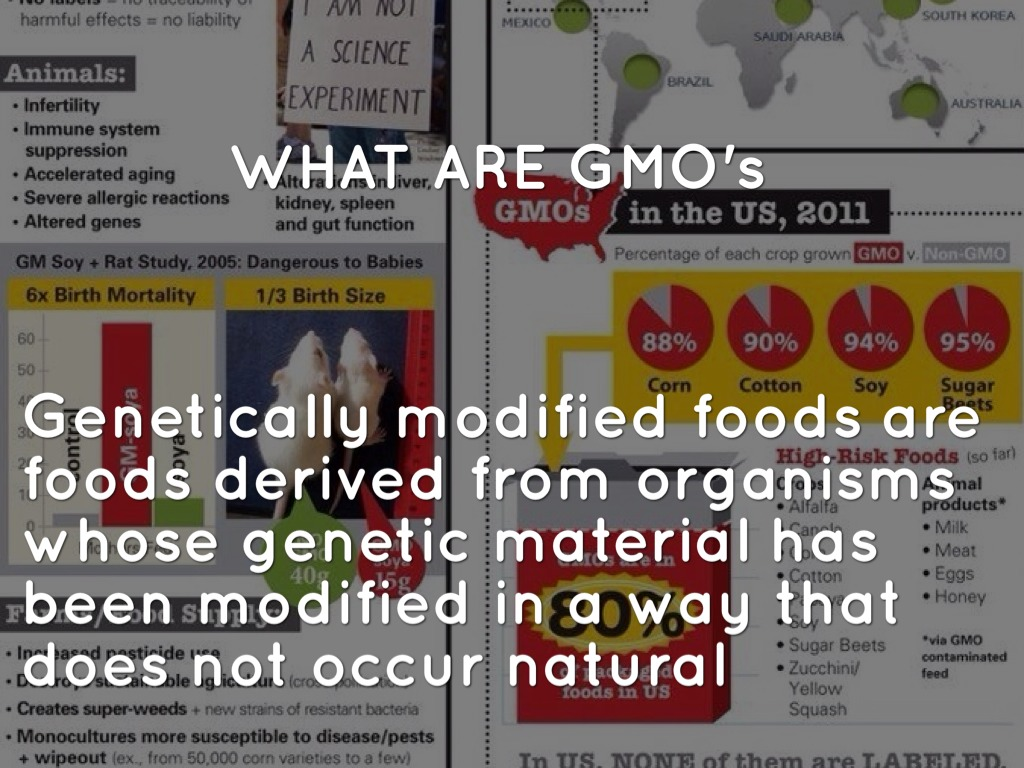 50 harmful effects of genetically modified Activists often cite the alleged potential health risks of genetically modified (there are 50 percent contributor to the genetic literacy project.
