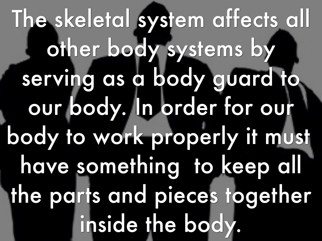 why is the skeletal system important to us