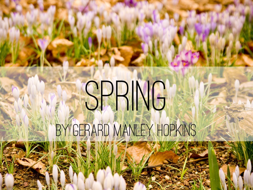 spring gerard manley hopkins Gerard manley hopkins was an english poet, roman catholic convert, and jesuit priest, whose 20th-century fame established him posthumously among the lead.