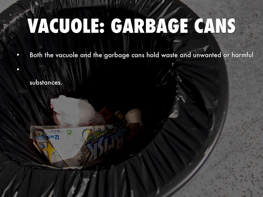 Image Result For Restaurant Garbage Cans