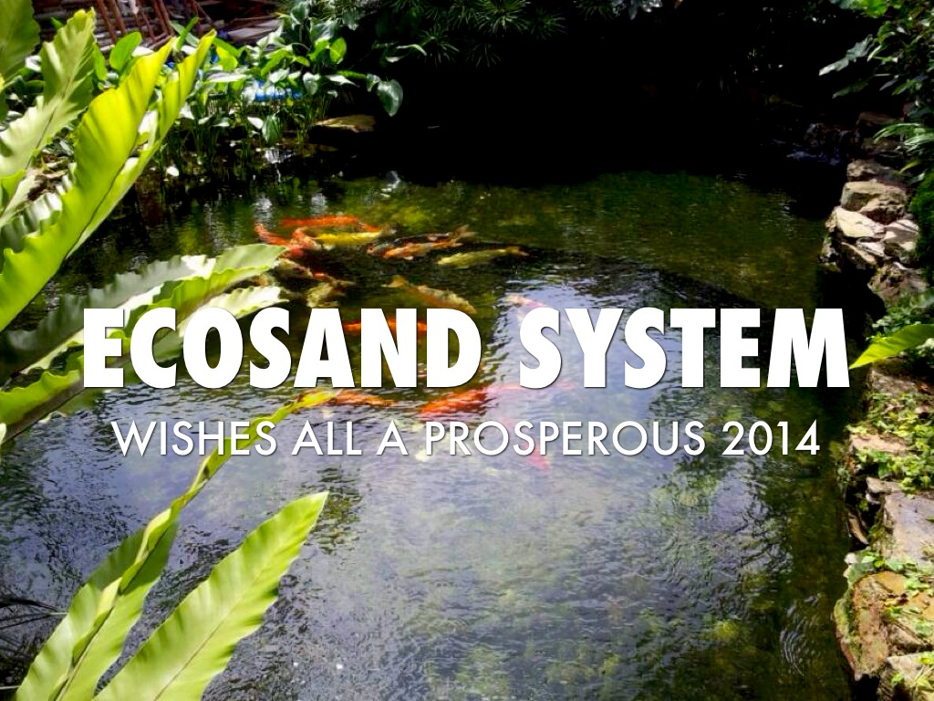 Ecosand System