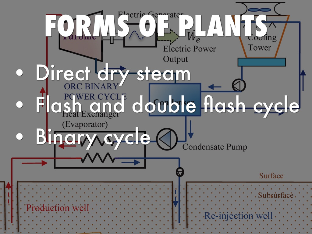Copy Of Geothermal Energy Power Plants By Max Donnelly Plant Diagram 6