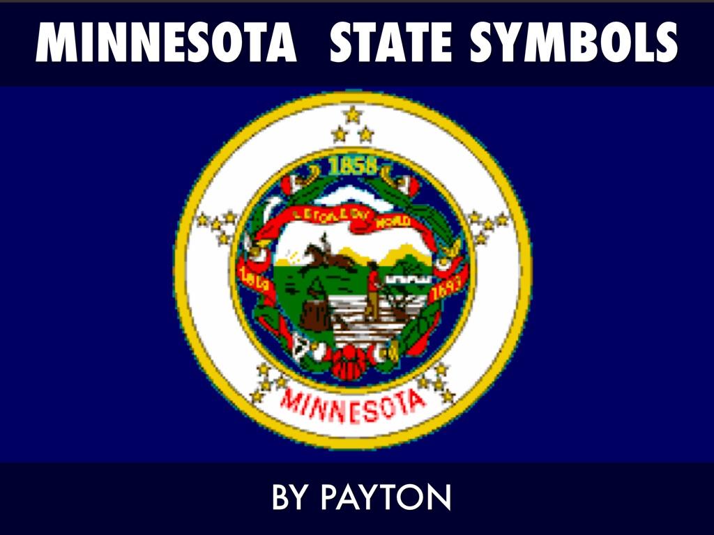 Minnesota state symbols by payton swanson slide notes buycottarizona Images