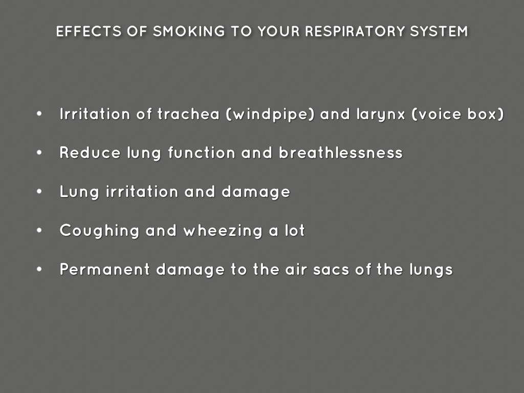 effects of smoking on respiratory system The effects of smoking to heart and and circulatory system  the abdominal aorta than non-smokers and smoking has a direct effect on the risk of.