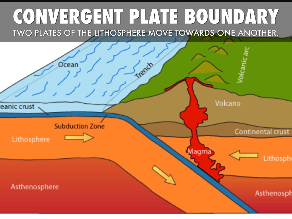 Tectonic Boundaries By Shelby Harrison