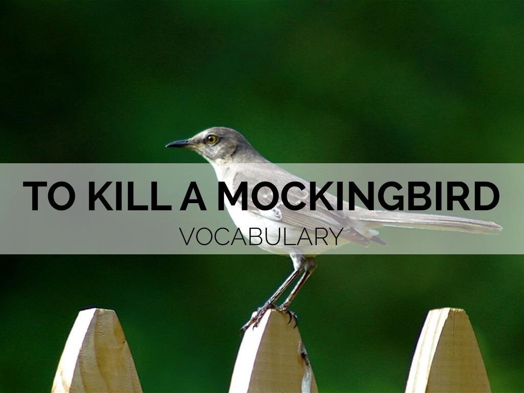 To Kill A Mockingbird Vocab By Anna Grk
