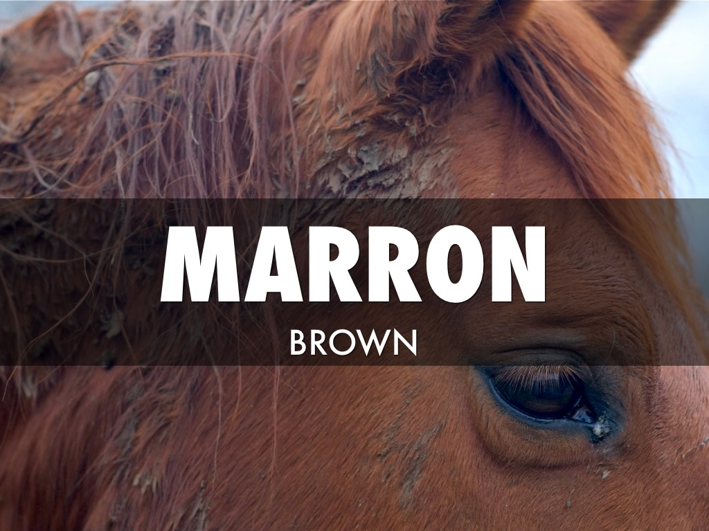 how to say maroon in spanish