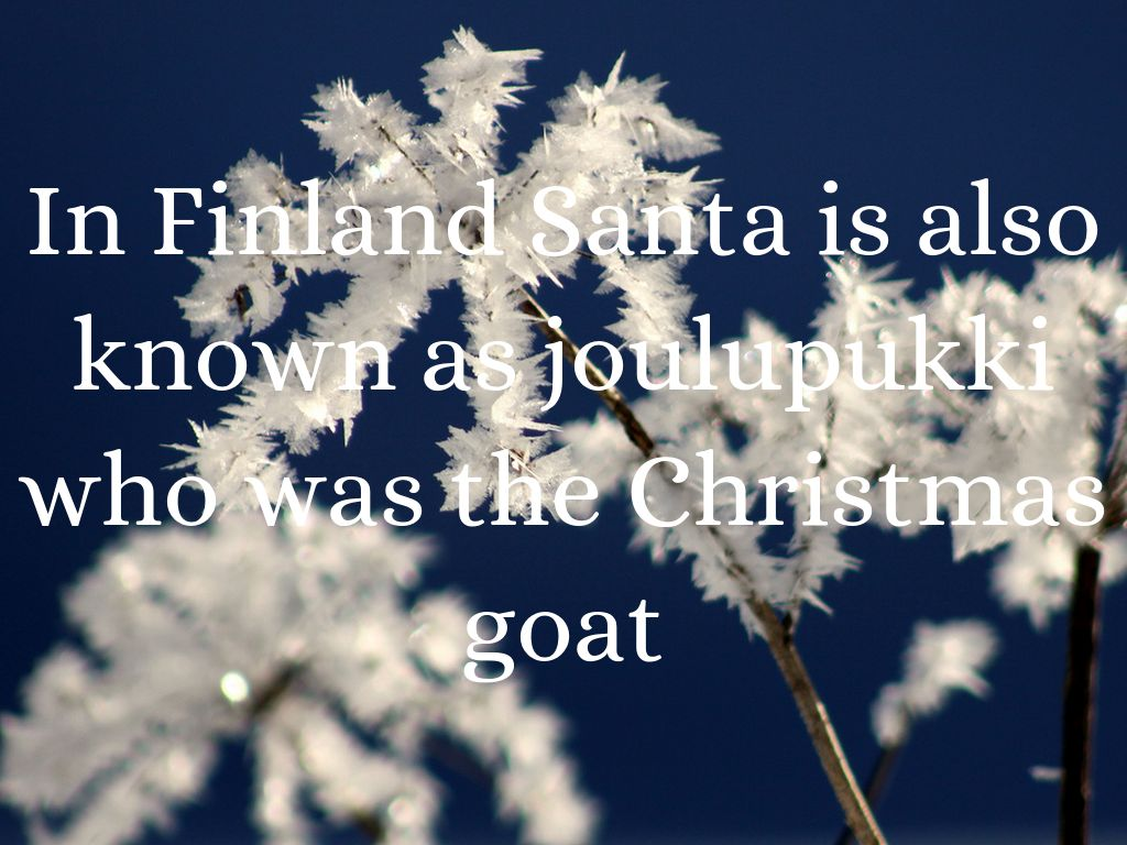 Finland Christmas Goat.Christmas In Finland By Matthew Johnson