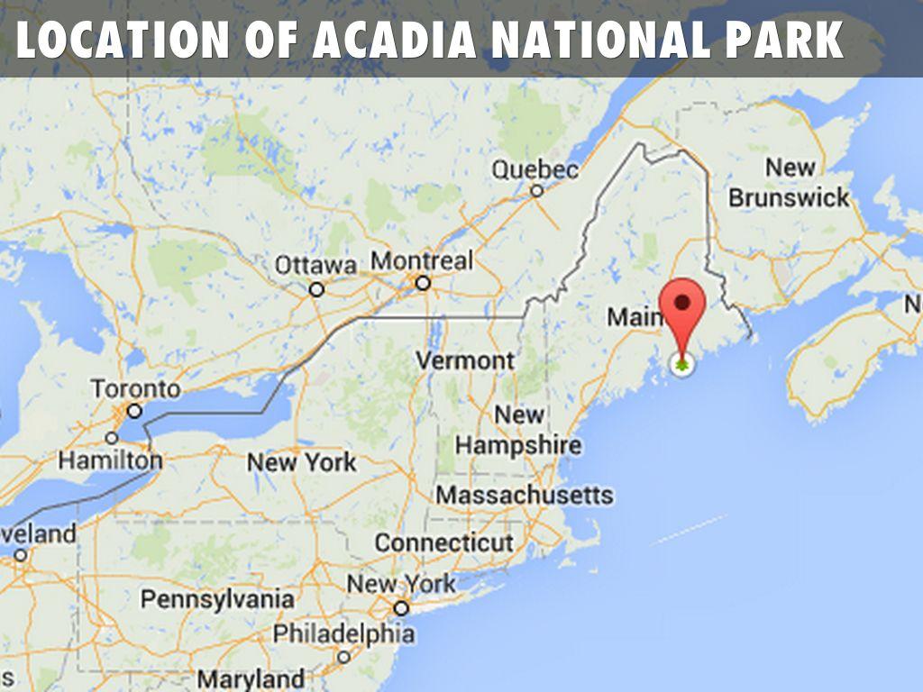 Biomes At Acadia National Park By Amy_petrilla