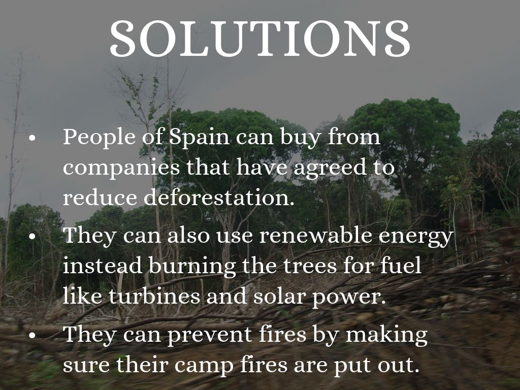 deforestation solution 1 the best solution to deforestation is to curb the felling of trees, by employing a series of rules and laws to this will curb total depletion of the forest cover it is a practical solution and is very feasible.