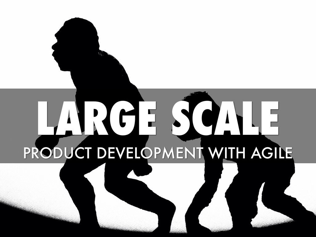 Large-Scale