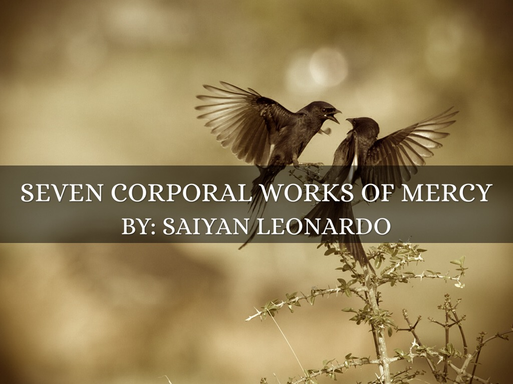 Visit The Imprisoned Corporal Works Of Mercy