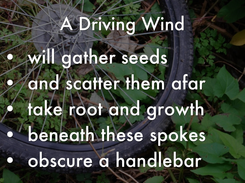 A Driving Wind