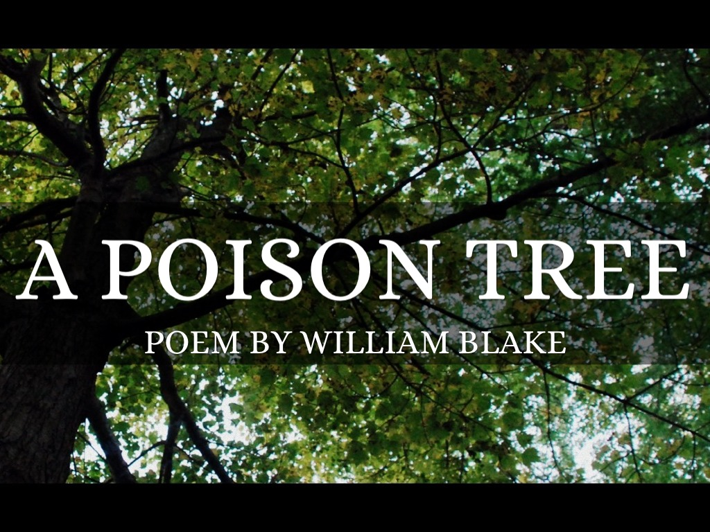 analysis of a poison tree Analysis of the poem a poison tree by william blake i am going to write about and analyse the poem a poison tree by william blake the poem a poison tree was written by william blake in 1794 as a collection of poems as songs of experience.