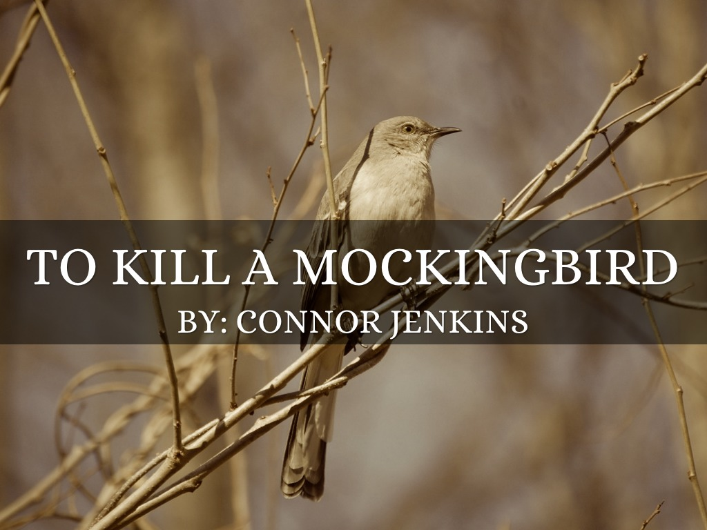 """to kill a mockingbird walk in """"jem and i watched our father take the gun and walk out into the middle of the street atticus pushed his glasses to his forehead"""" in the first image, atticus is being threatened by the."""