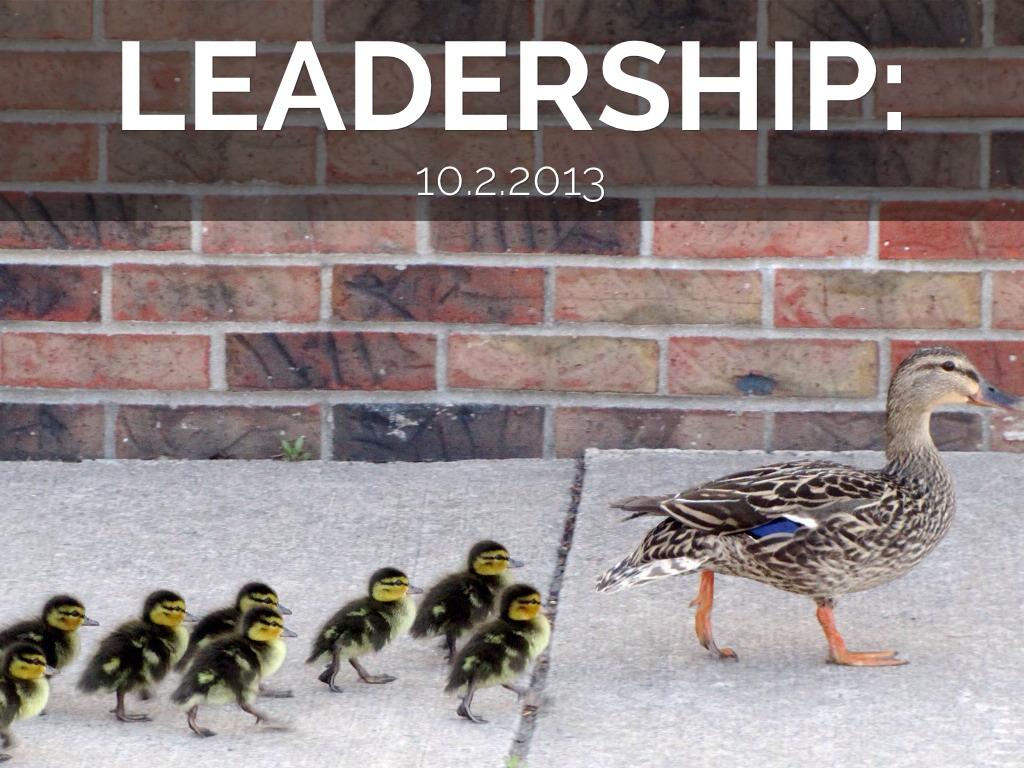 Leadership Study