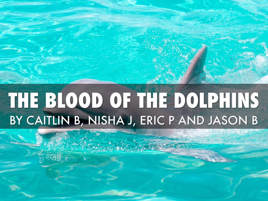 Japan's Dolphin Slaughter Ritual