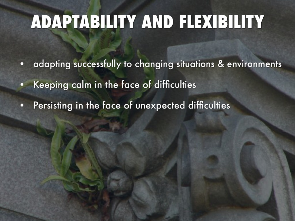 flexibilty and adaptability to change What are flexibility and adapt to new situations, flexibility is often utilized in one to learn from one's mistakes and to change one's.