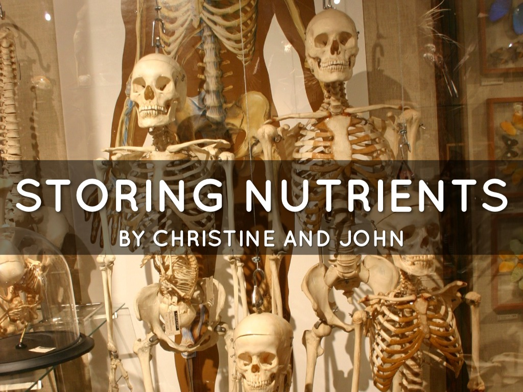 The Skeleton: Storing Nutrients