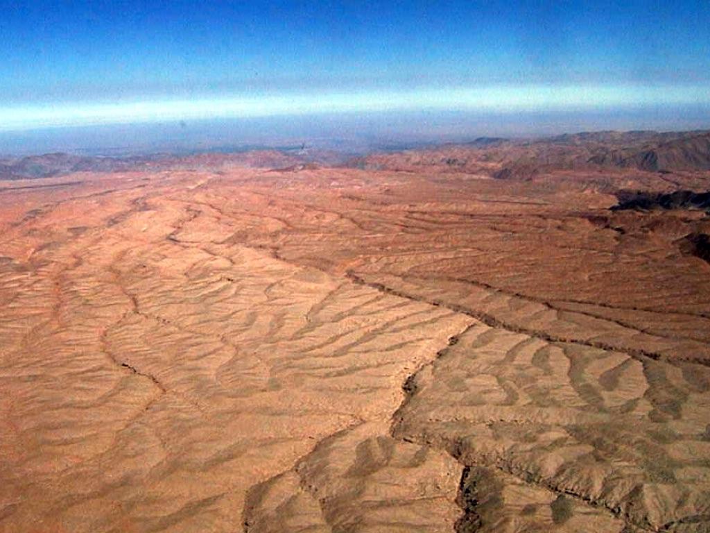 Biotic Factors  Tropical amp Hot Deserts