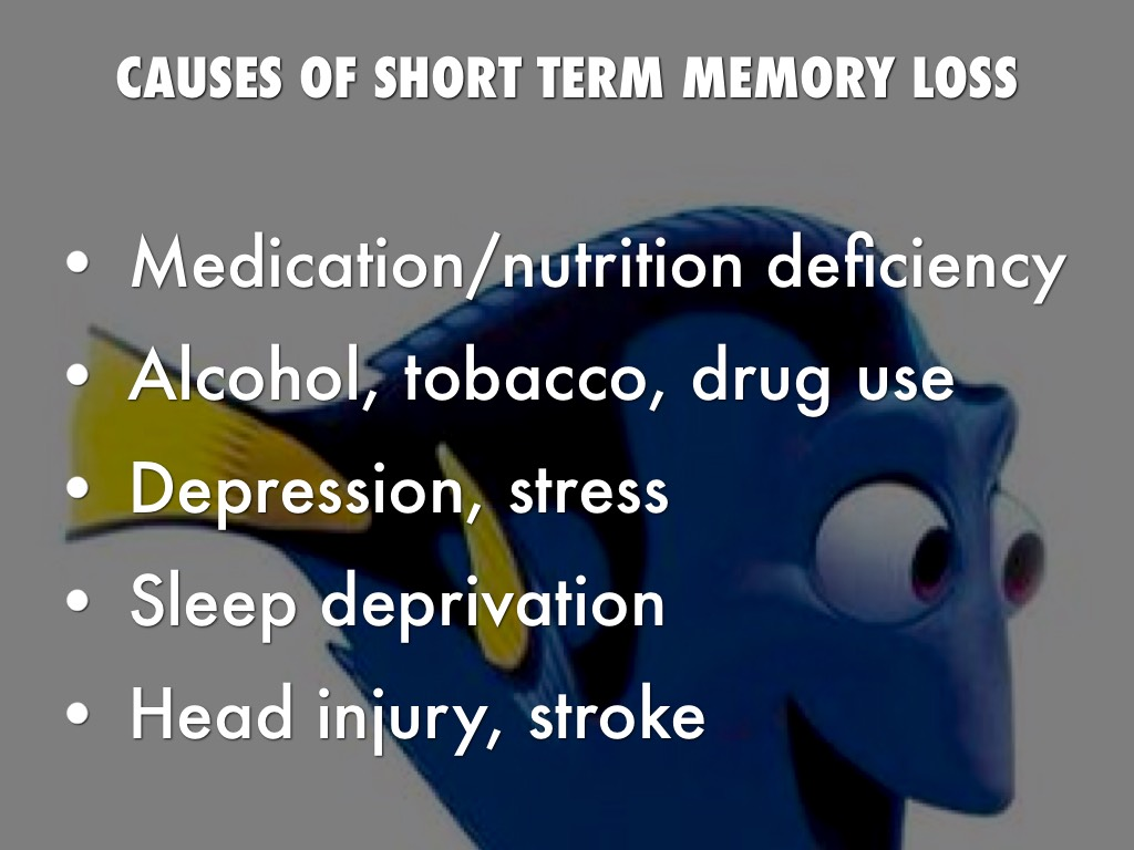 short term memory essays Short/long-term memory loss and treatments essays for my article summary paper, i have chosen to use chapter 7 the human memory i have picked several articles to.