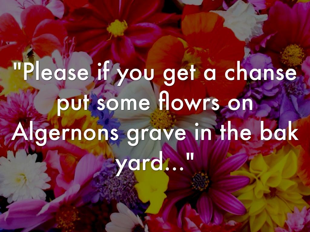 Flowers For Algernon by prewittd