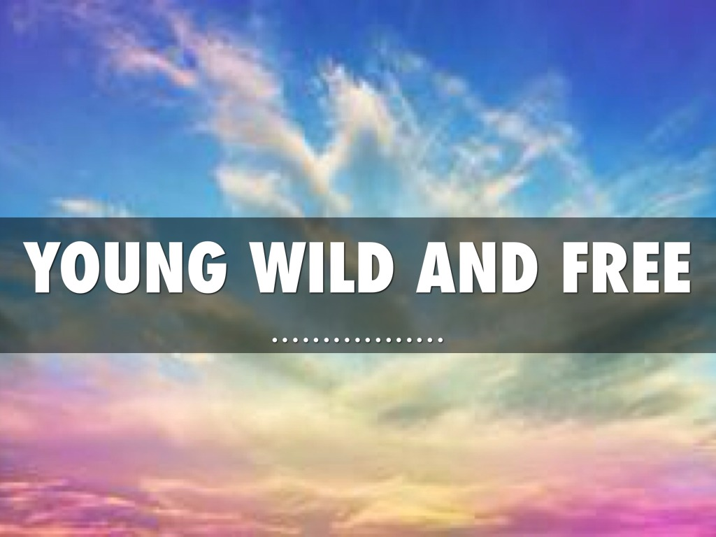 Free Quotes Young Wild And Free Quote  Inspiring Quotes And Words In Life