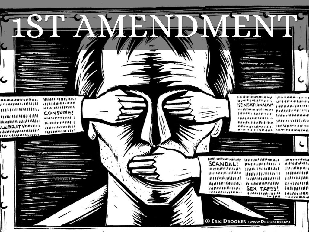 amendment project by taylor.cottongim