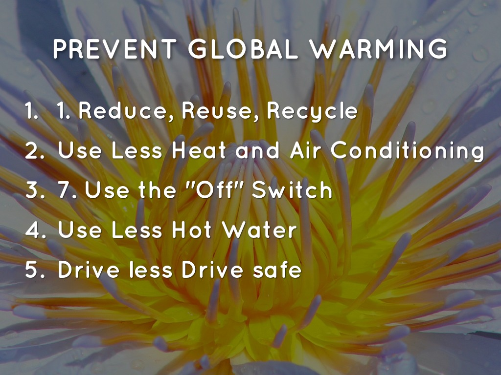 to prevent global warming