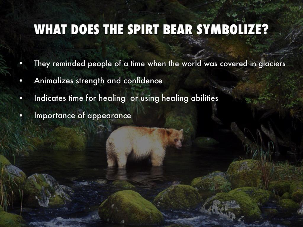 Spirit bear by blivaditis what does the spirt bear symbolize buycottarizona Choice Image