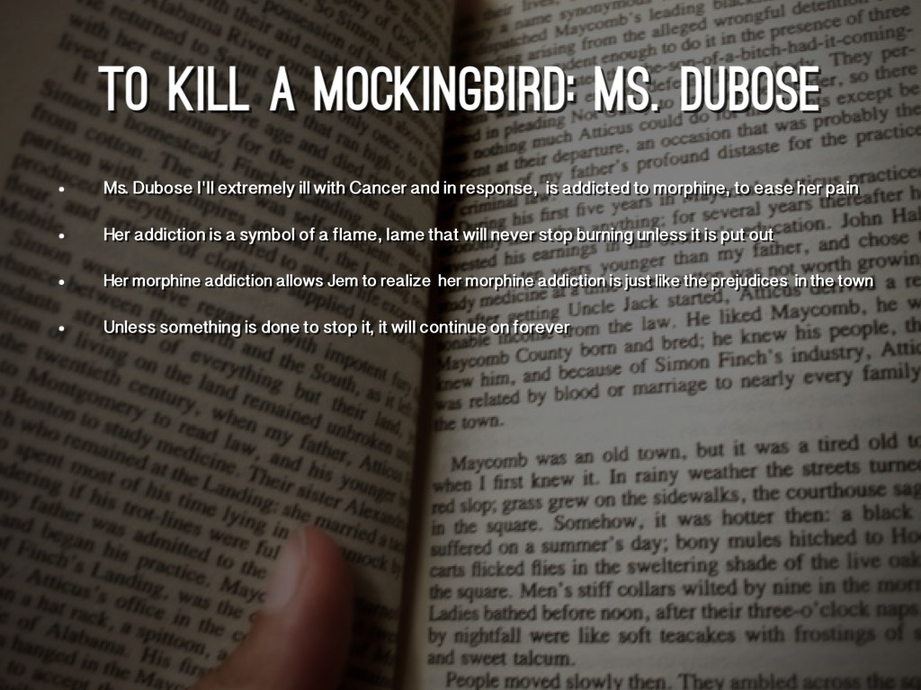 """Relationship between """"How to Kill a Mockingbird"""" and """"Mississipi Burning"""" Essay Sample"""