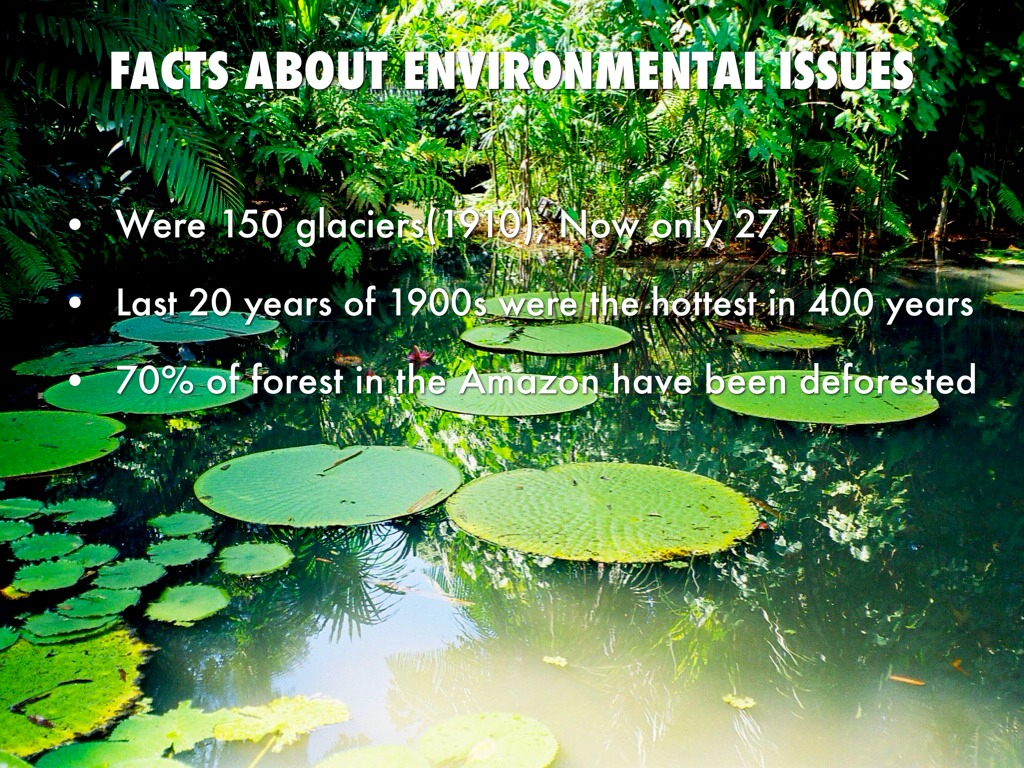 environmental problem that faced by genting 2012a project report on ratio analysis with reference to genting  problem faced in the case of environmental  mba finance project report on ratio analysis.