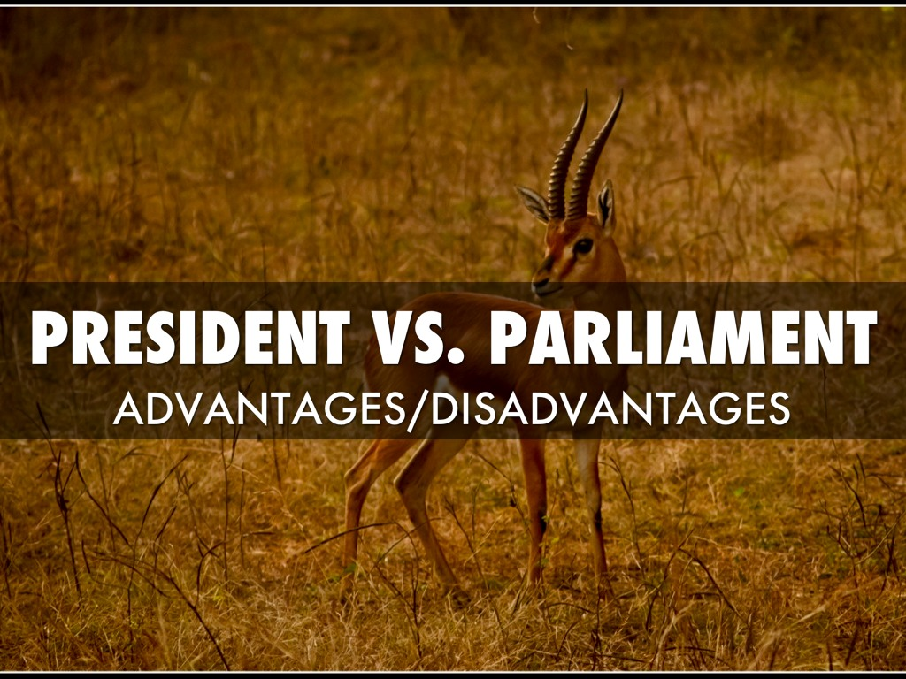 "parliamentary government vs presidential government The parliamentary gridlock, ""constitutional"" transfer of powers and the recall  14 the kmt government was, until the 2000 presidential elections, clearly a."