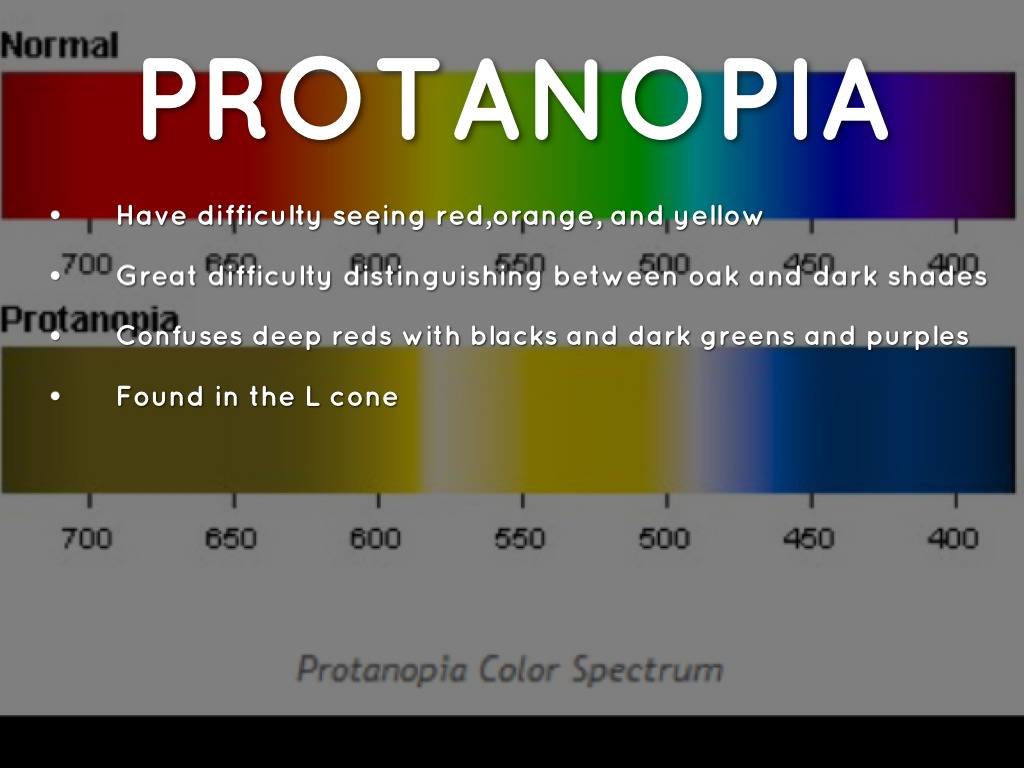 color blindness powerpoint by hannah elizabeth