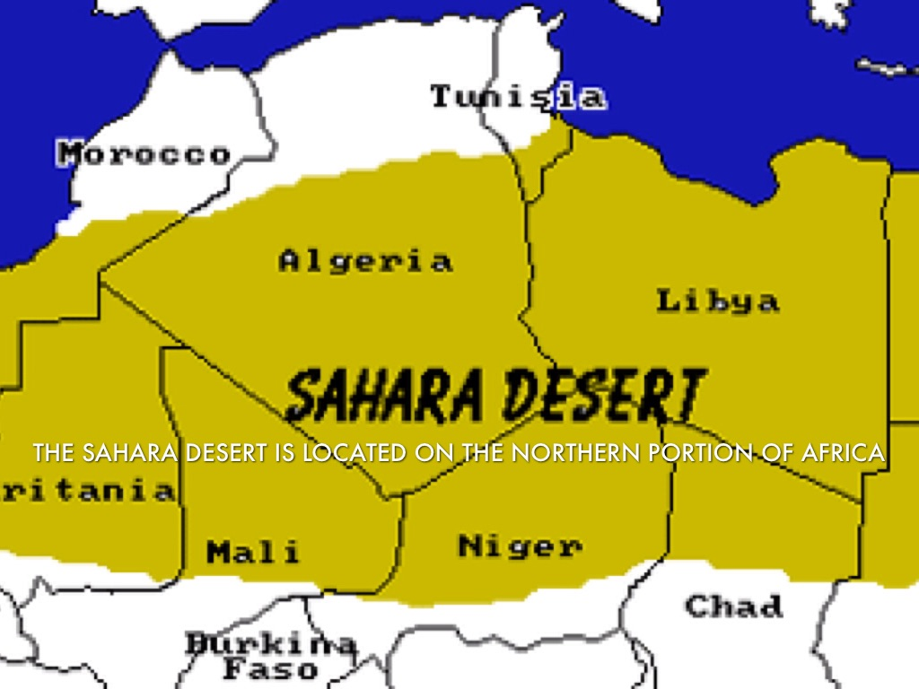 The Sahara Desert by Bruno Stevaux