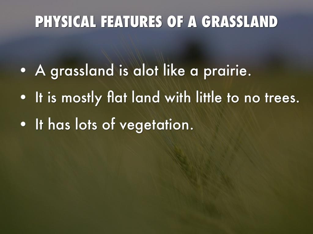 grasslands animals