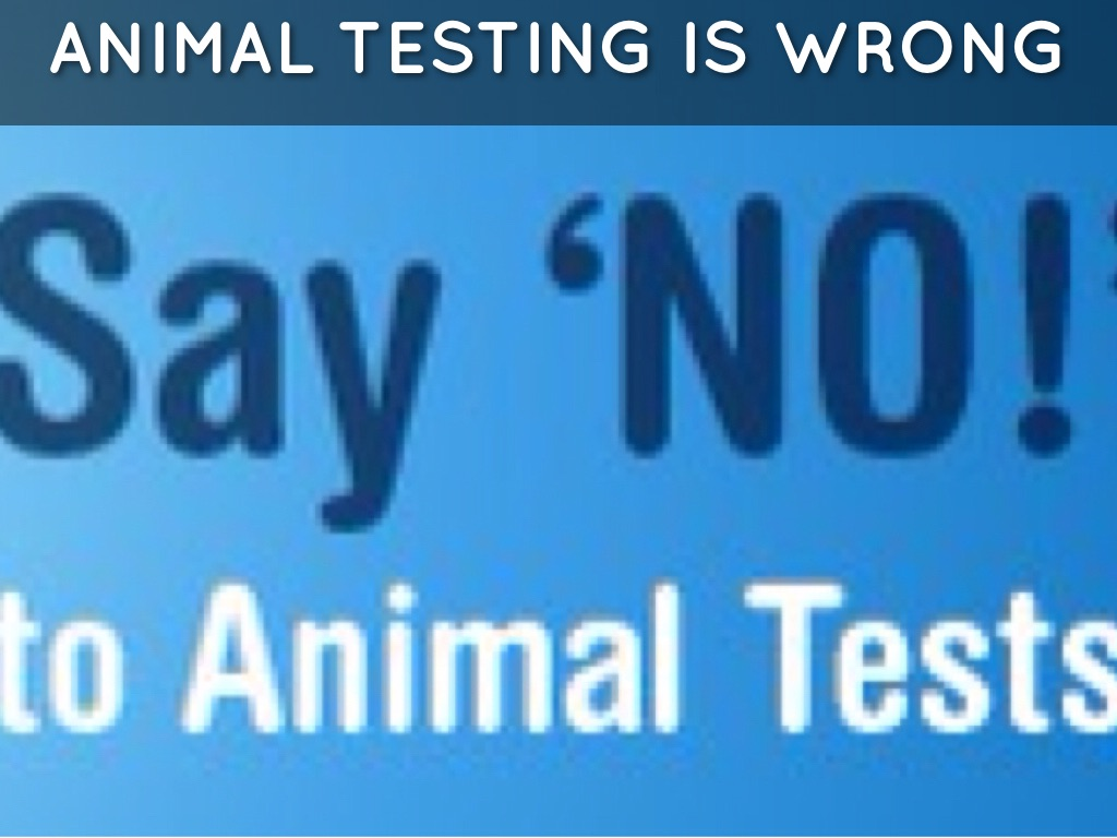 animal testing its wrong