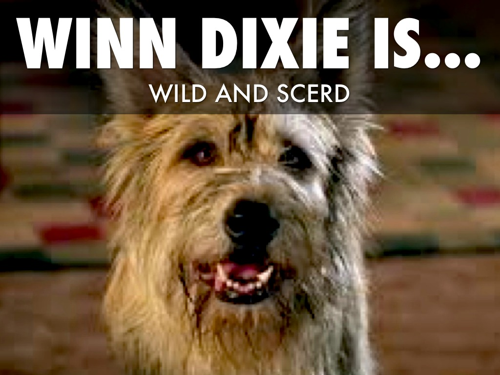 written critique on corduroy and winn dixie Because of winn-dixie is a warmhearted, lovely combination of hilarity (in one scene winn-dixie captures an unhurt mouse in the church and delivers it to the preacher during his sermon), poignancy (a candy that tastes of sadness created by a young man who lost everything in the civil war), and the kind of characters you find only in southern.