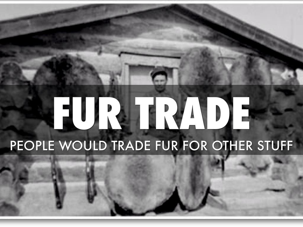fur trade solution