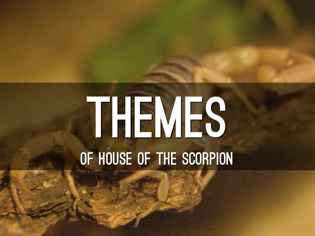 thematic analysis on night of the scorpion When writing a thematic statement one should not mention character(s) in the text by name the following words are useful when writing thematic statements.