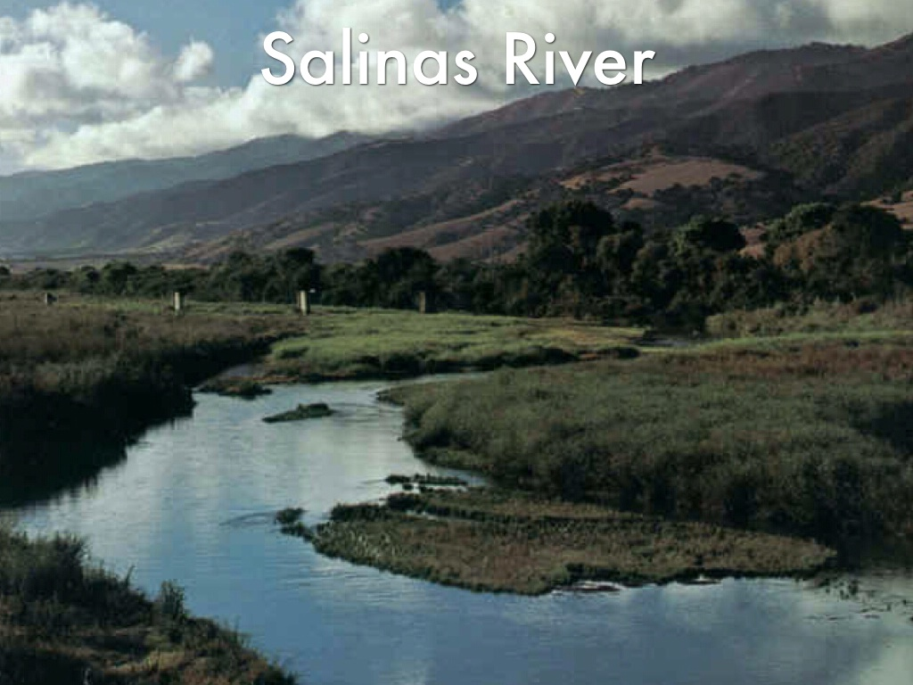 salinas river area of california 2 The mostly suburban city is located at the mouth of the salinas valley  at least 2  but less than 4 years private for profit $12,975 average out-state tuition.