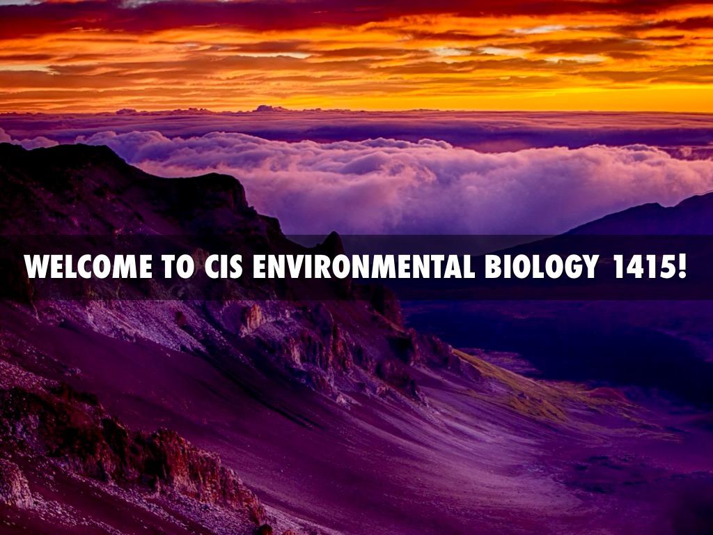 cis environment Audit under computerised information system (cis) environment| cis environment| ca final audit| cis follow me on facebook - ca kapil goyal audit discussion.