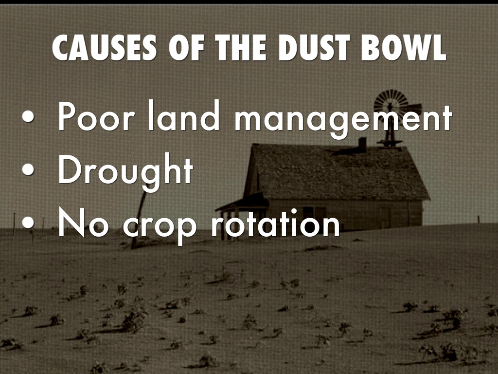 dbq what caused the dust bowl Essay on what caused the dust bowl plowing year after year and the lack of rainfall, the soil was quickly losing its fertility with unfertile, dry land.