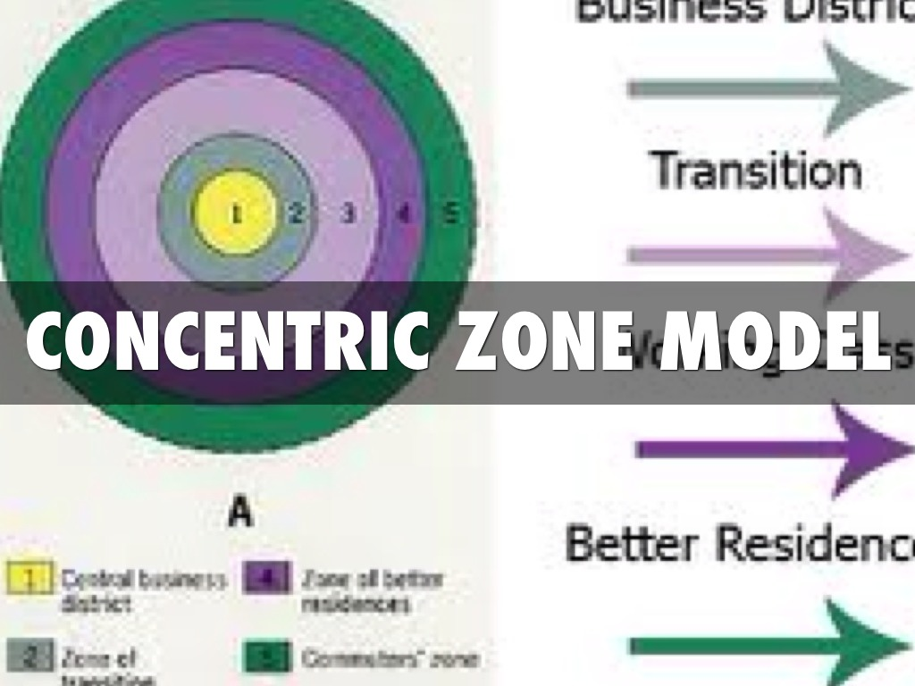 concentric zone theory Below, we will examine the concentric zone model, sector model and   originated by earnest burgess in the 1920s, the concentric zone model depicts  the.