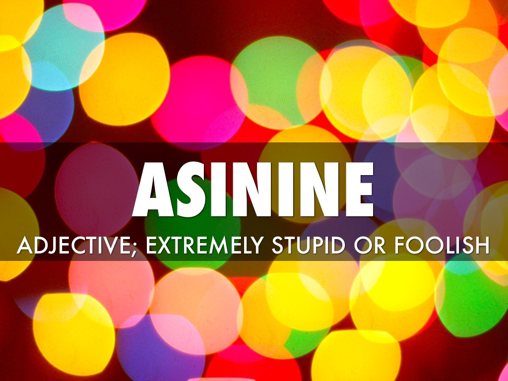 Asinine by Stephanie Bedore