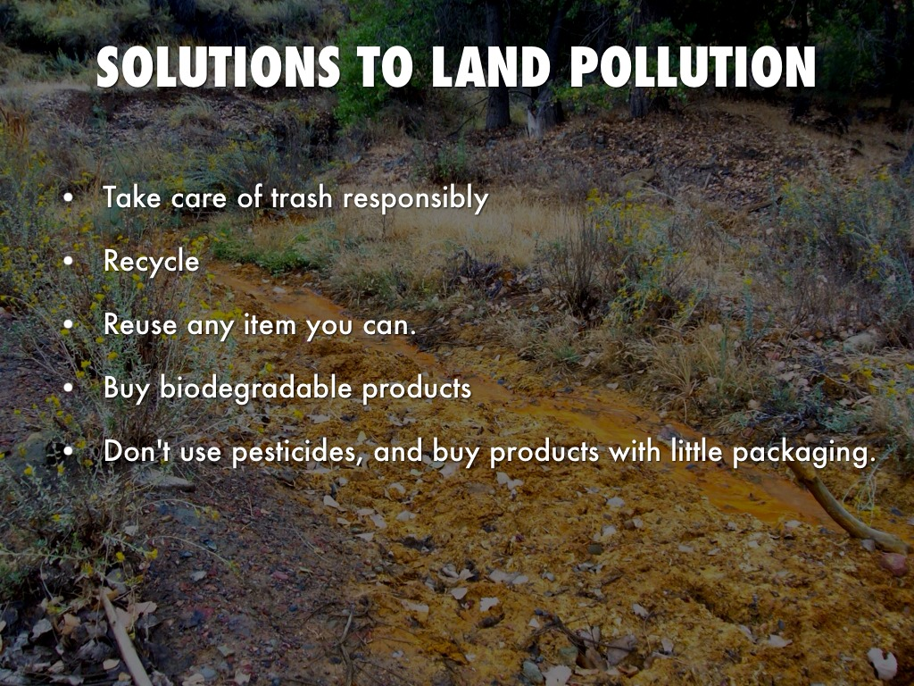 essay on land pollution technology temper cf essay on land pollution